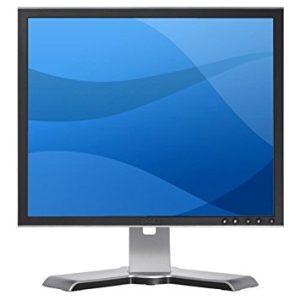 19 DELL LCD